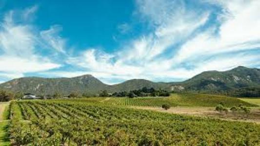 grampians australlia wine region