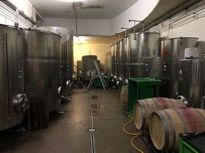 White wine fermentation tanks Reinisch winery