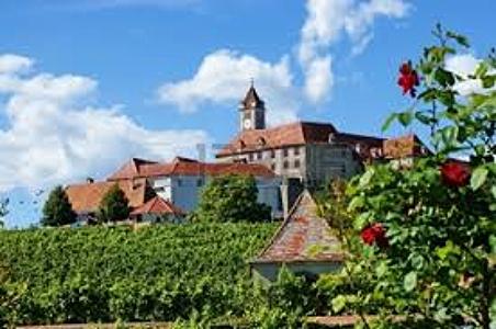 Steiermark vineyard Austria