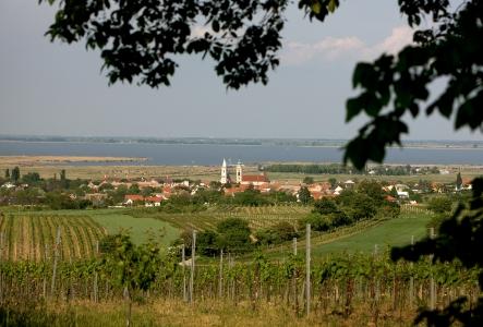 Rust vineyard Austria