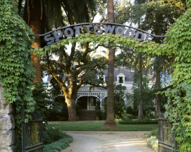 Spottswoode family estate, st. helena, napa valley