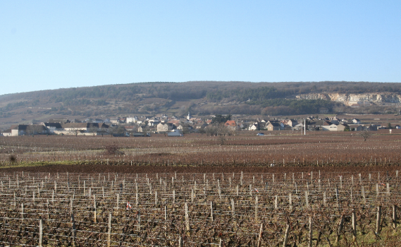Domaine Bernard Moureau vineyards Burgundy