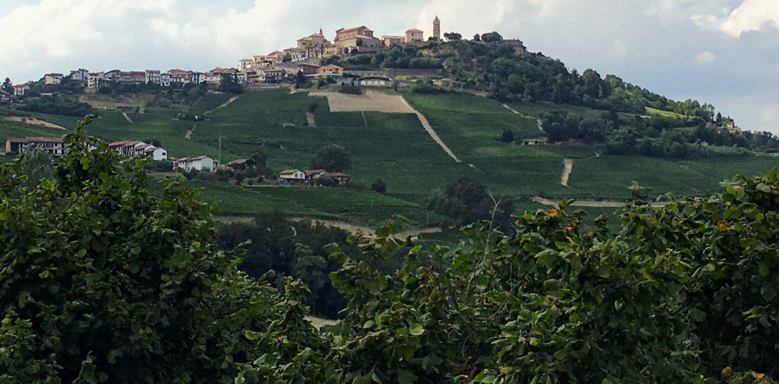 Views to La Morra Piedmont