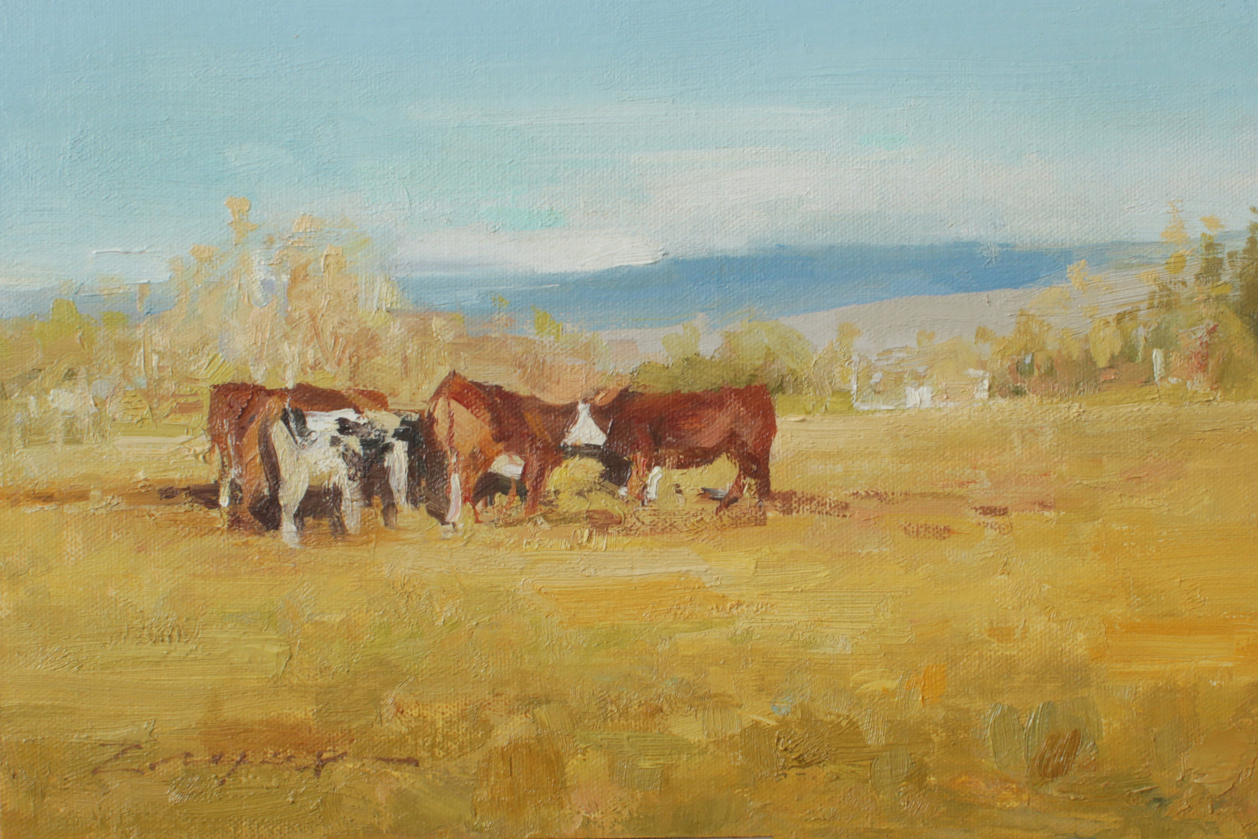 """January Cows"" 8x12 Available at the Wilcox Gallery, Jackson, WY"