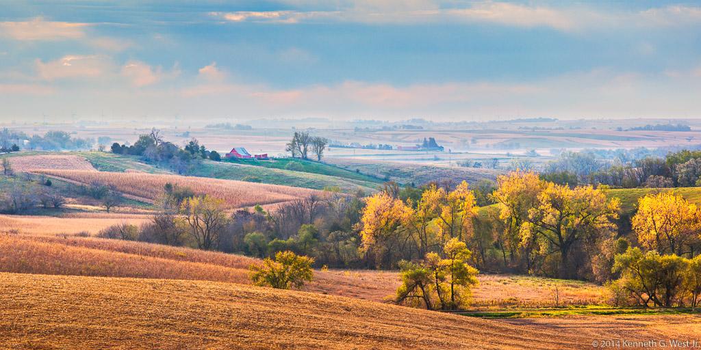 Fall Harvest (16-24113)