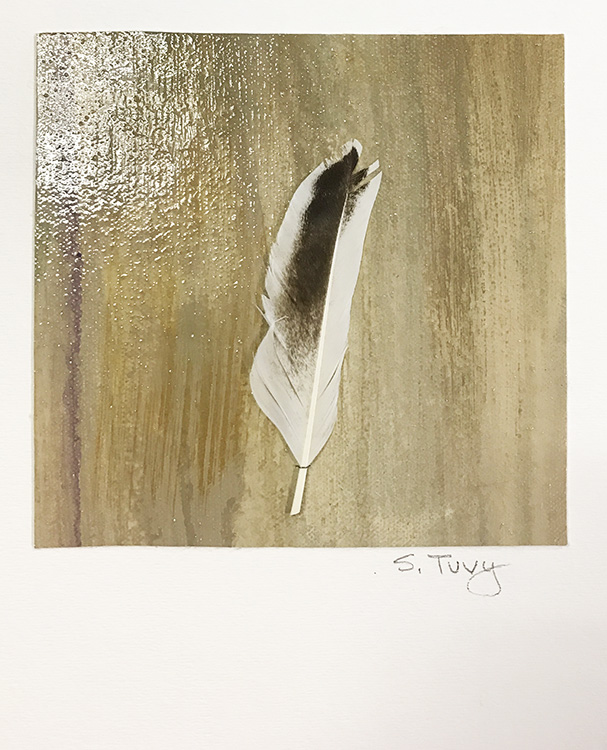 """Feather #4""  17-24621"