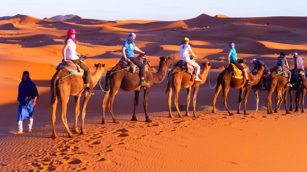 Alpguide_marroco
