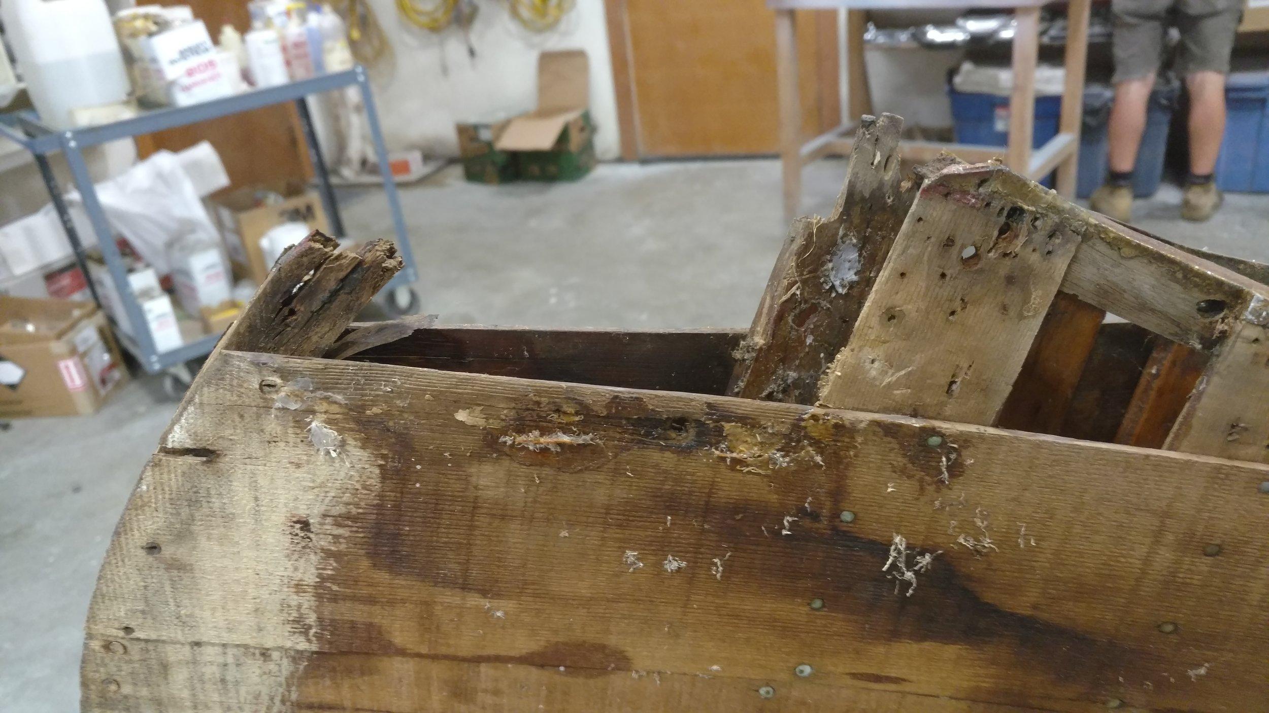LCACBS Canoe Restoration 2.jpg