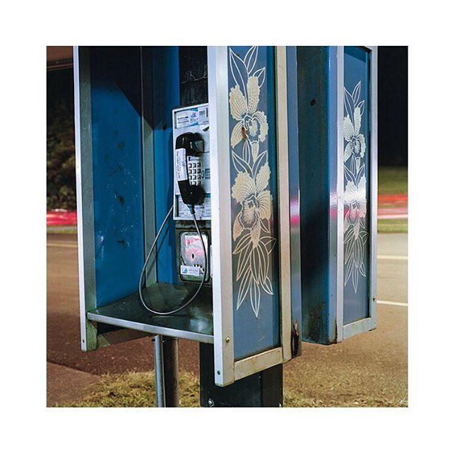 Telephone Blues Some new work from Hawaii for my series Vagabond Shot with Hasselblad 500CM on @Kodak Portra 160 . . . . . . . . . . . . . . . . . . . . #analog #hawaii #plants #journalism #documentary #mediumformat #120film #island #photography #travel #analogphotography #oahu #staybrokeshootfilm #film #kodak #explore #shootfilm #hasselblad #500cm #squareiscool
