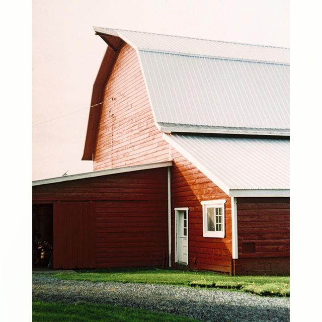 NY - R . . . . . . . . . . . . . . . . . . . . . . . . . . #photography #upstate #travelphotography #analog #rangefinder #hudson #travel #kodak #explore #leica #shootfilm #newyork #plants #documentary #adventure #art #35mm #analogphotography #leicam2 #staybrokeshootfilm #journalism #portra400 #film #portra #farm #barn