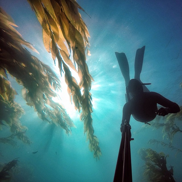 me freediving.jpg