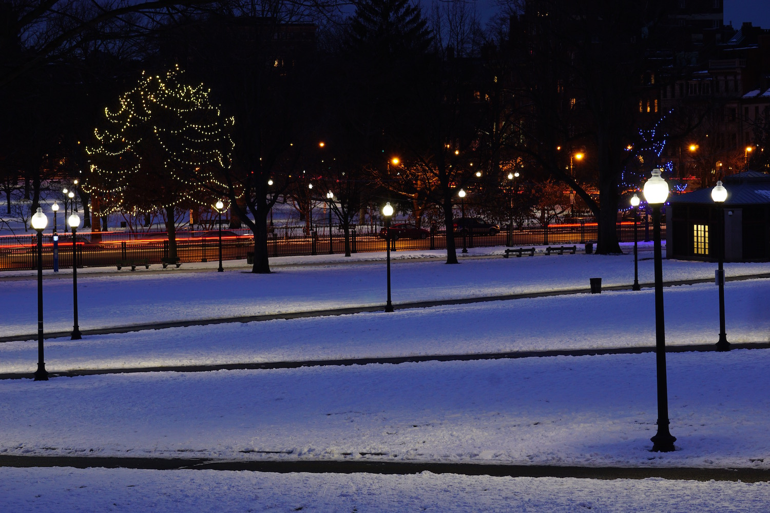 Boston Common at night by Suzanne Merritt  copy.jpg