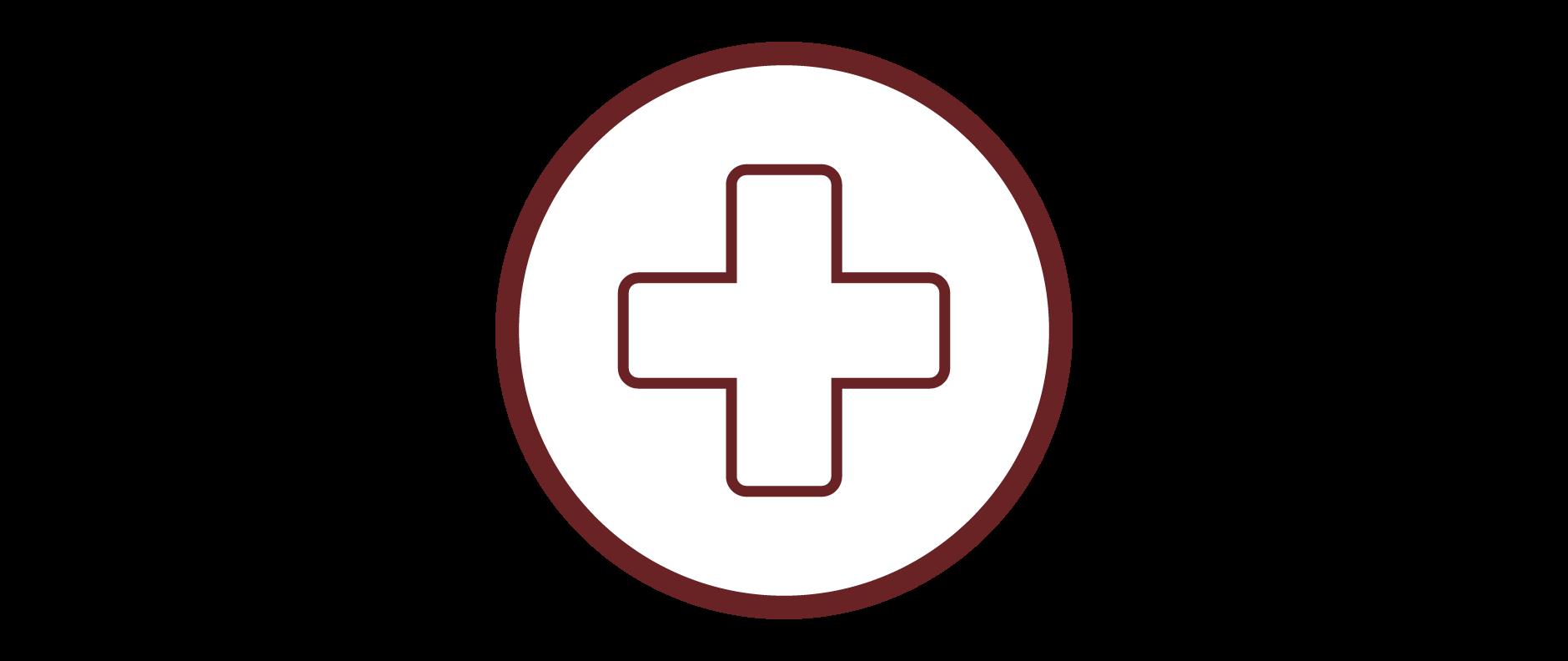 healthinsuranceicon_cafourek