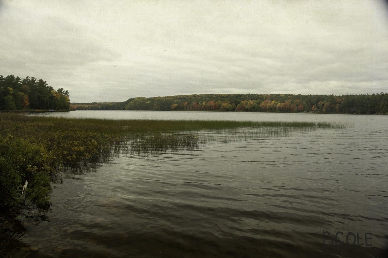 Deer Lake, Michigan © Beth Cole