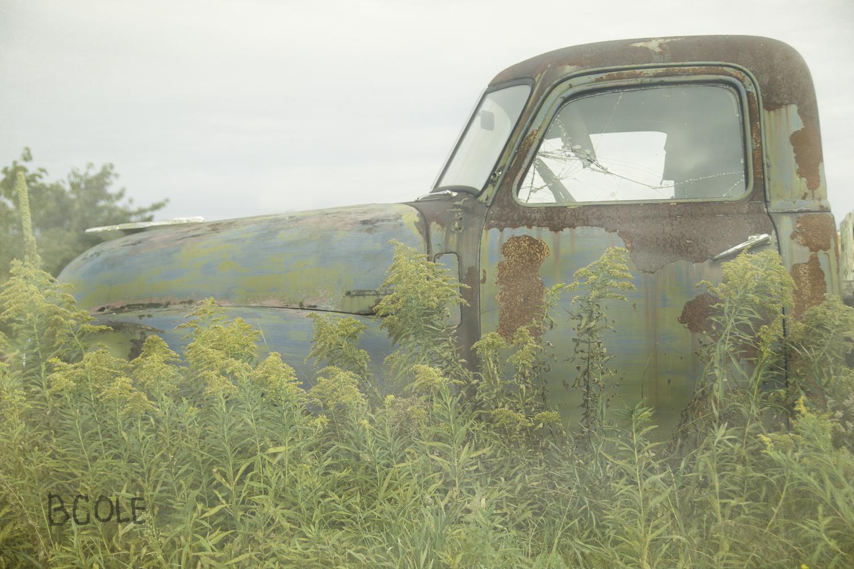 I think in Door County, Wisconsin. © Beth Cole