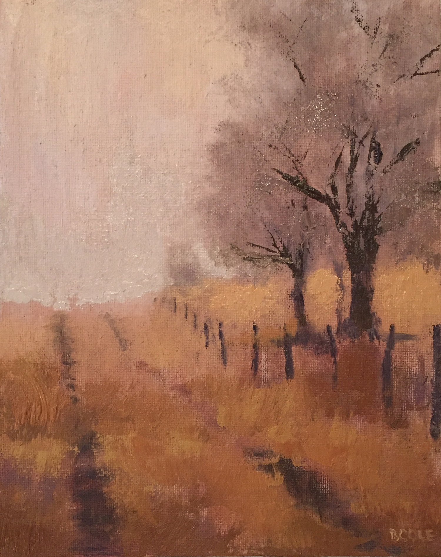 Dry Creek | 8 x 10 | Oil on Canvas | ©Beth Cole