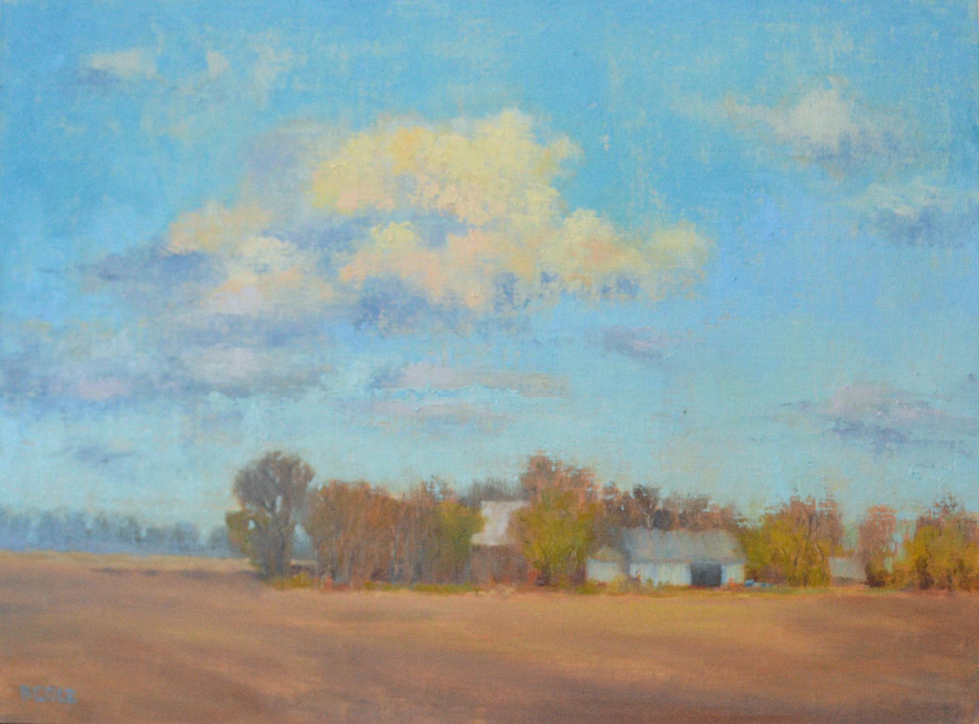 Fallow   18 x 24   Oil on Linen   © Beth Cole