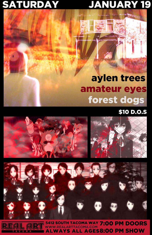 Amateur-Eyes.jpg