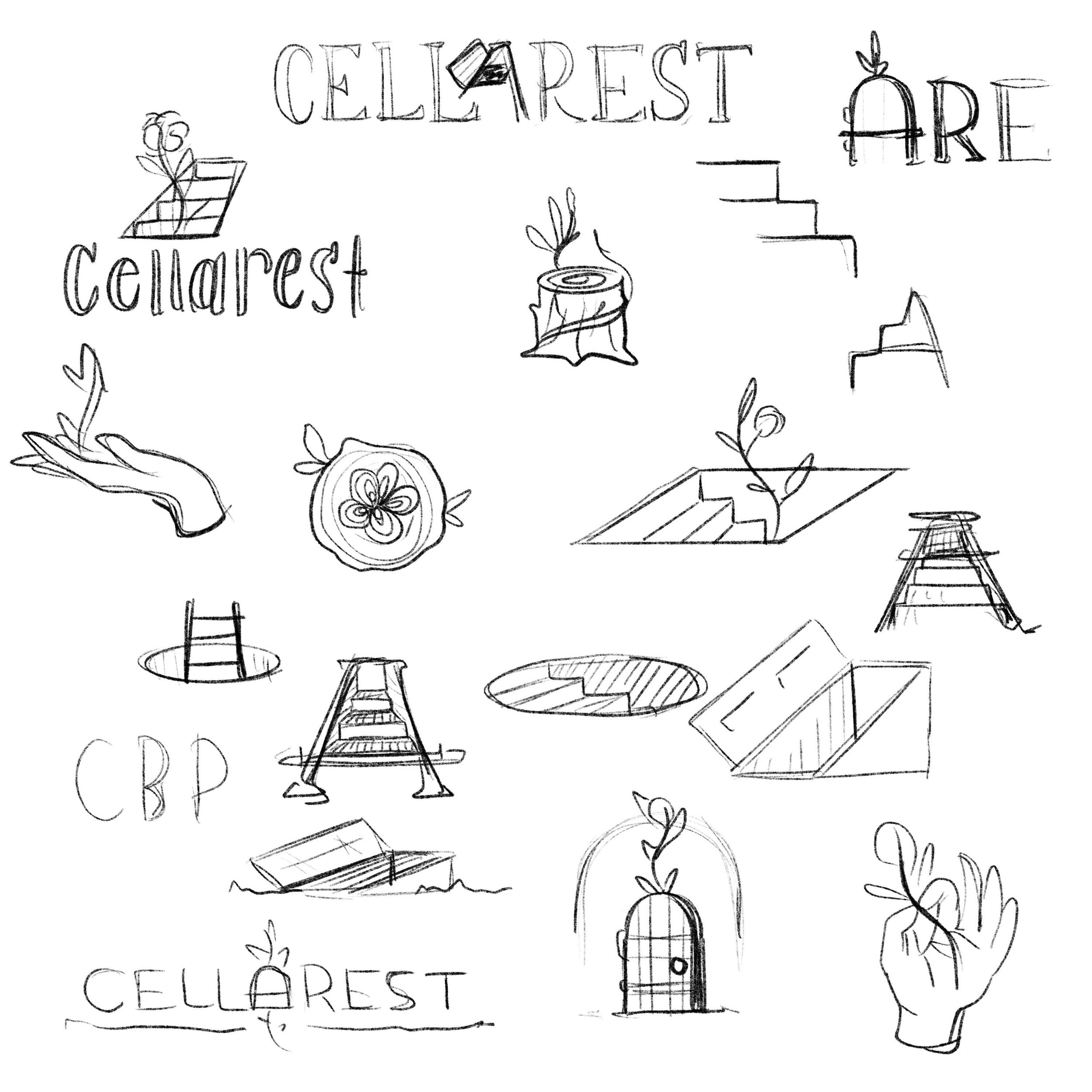 Cellarest Beer Project Sketches and Concepts