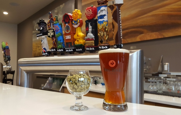 Citradelic is one of Big Rock's newest brews and it's the hoppiest one they've ever had flowing from their taps. (Sarah Lawrynuik/CBC)