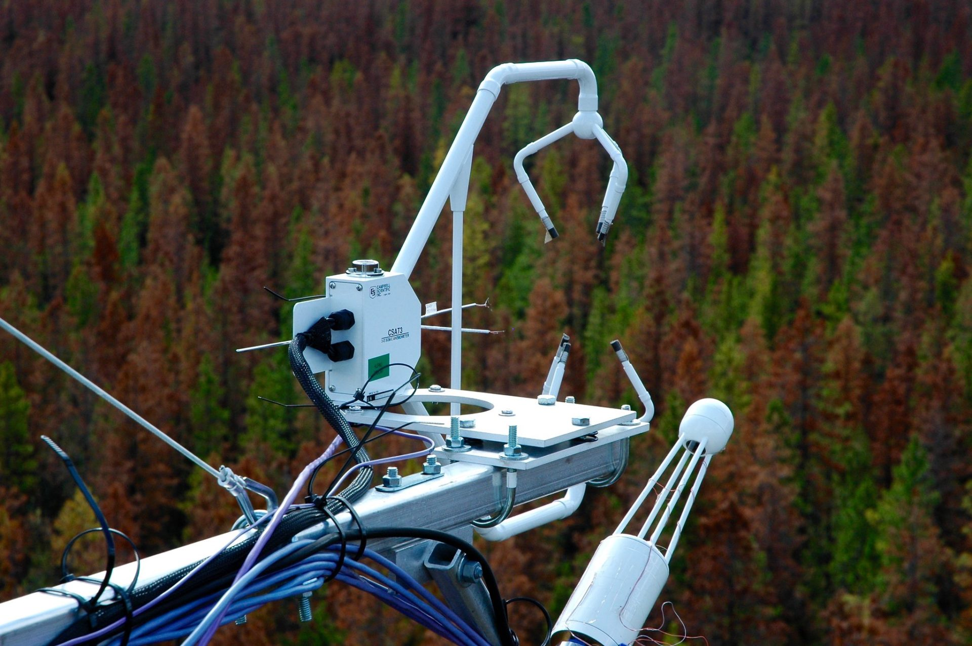 Equipment at a flux tower operated by UBC Micrometerology measures wind, heat and water 25 metres above a forest canopy attacked by the mountain pine beetle in Kennedy. B.C. The project is designed to better understand how pine beetle forests influence greenhouse gases emissions. Photo: Andreas Christen /  UBC Micrometerology Flickr