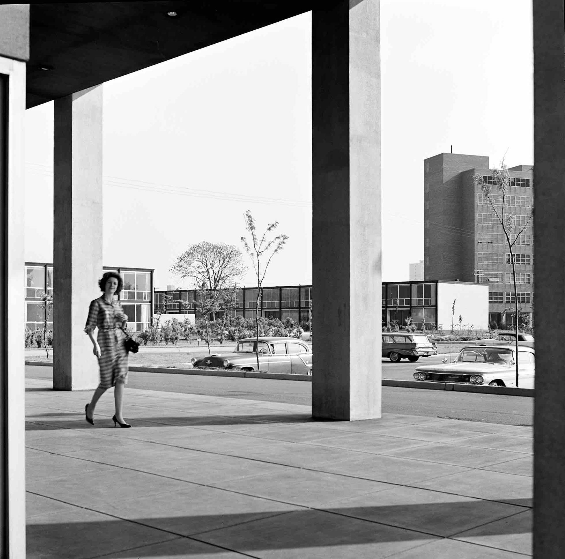 1956.Mies_Lafayette_120bn387 FPO.jpg