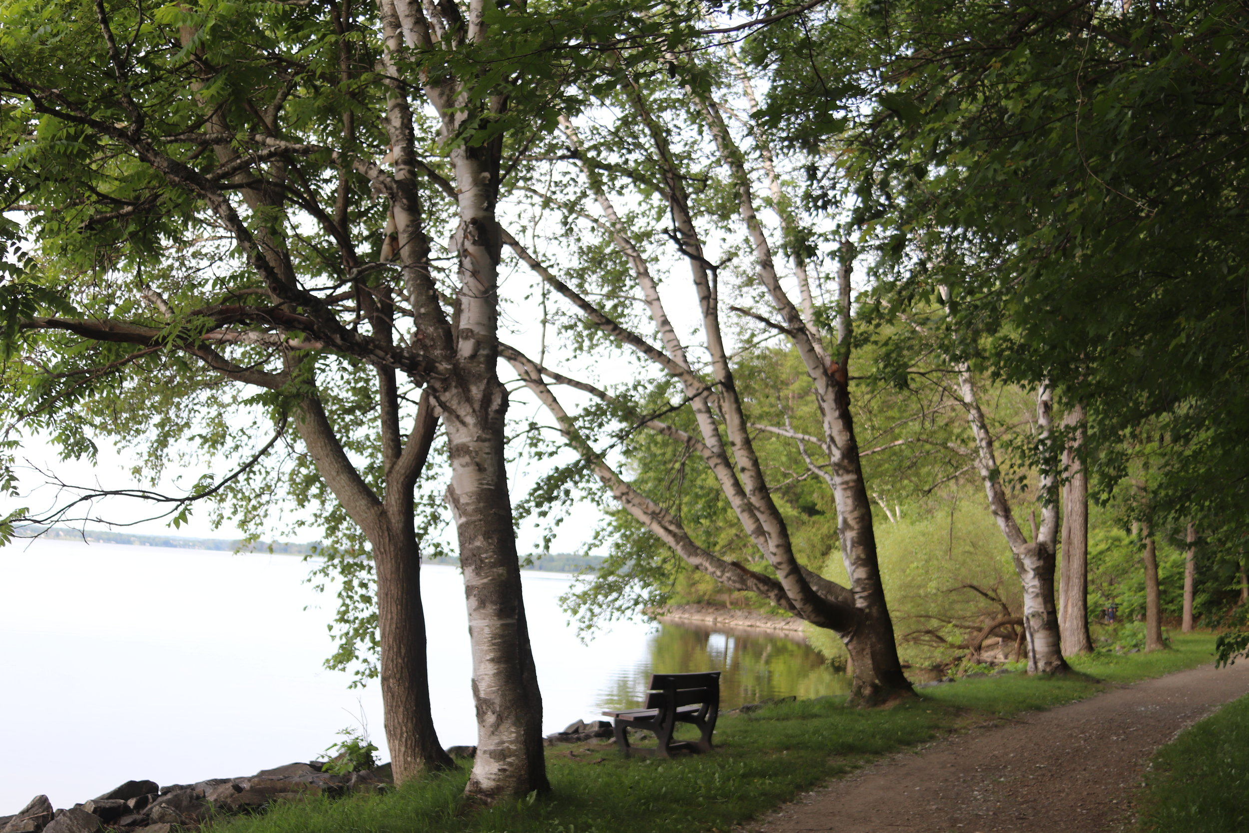 - Our stay at the Chateau Montebello Marina provided an opportunity for a brisk early morning walk!