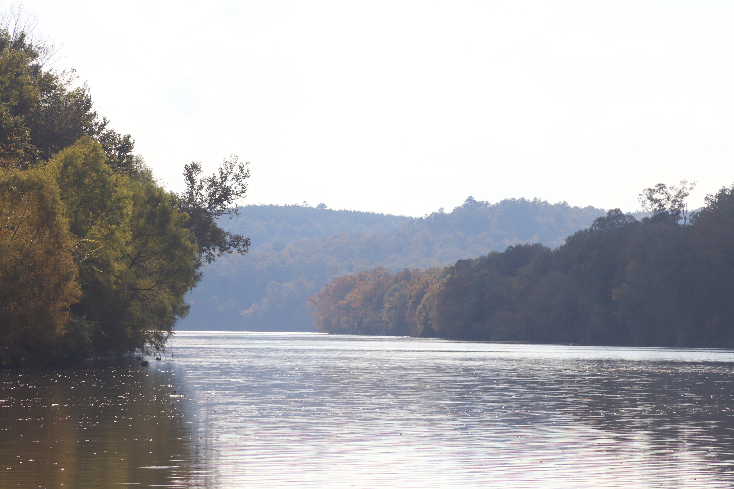 Black Warrior-Tombigbee, a little south of Bobby's Fish Camp