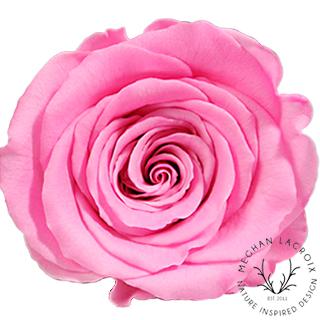 Bright Pink -