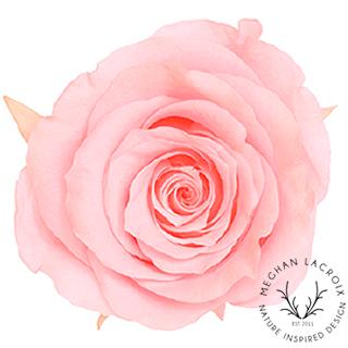 Bridal Pink -