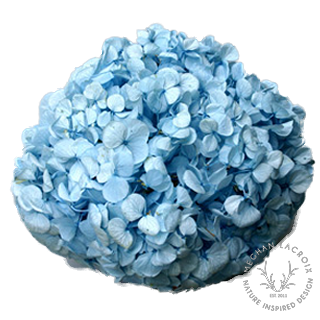 Light Blue -