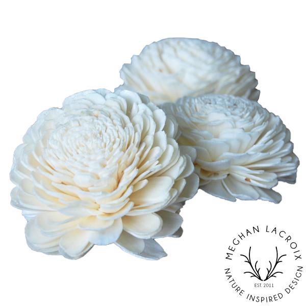 Sola Flowers -
