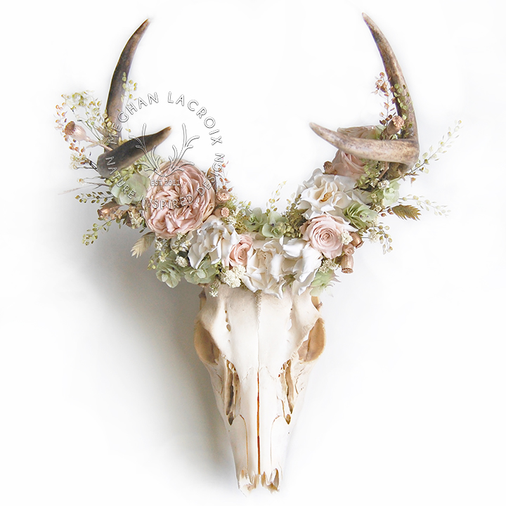 `Deer Skull with Pink Flowers by MeghanLaCroix.com