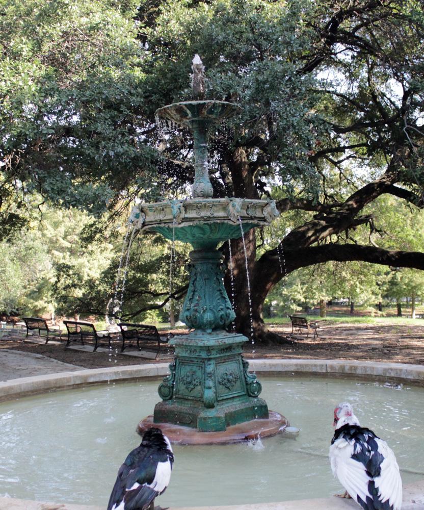 Scanlan Fountain