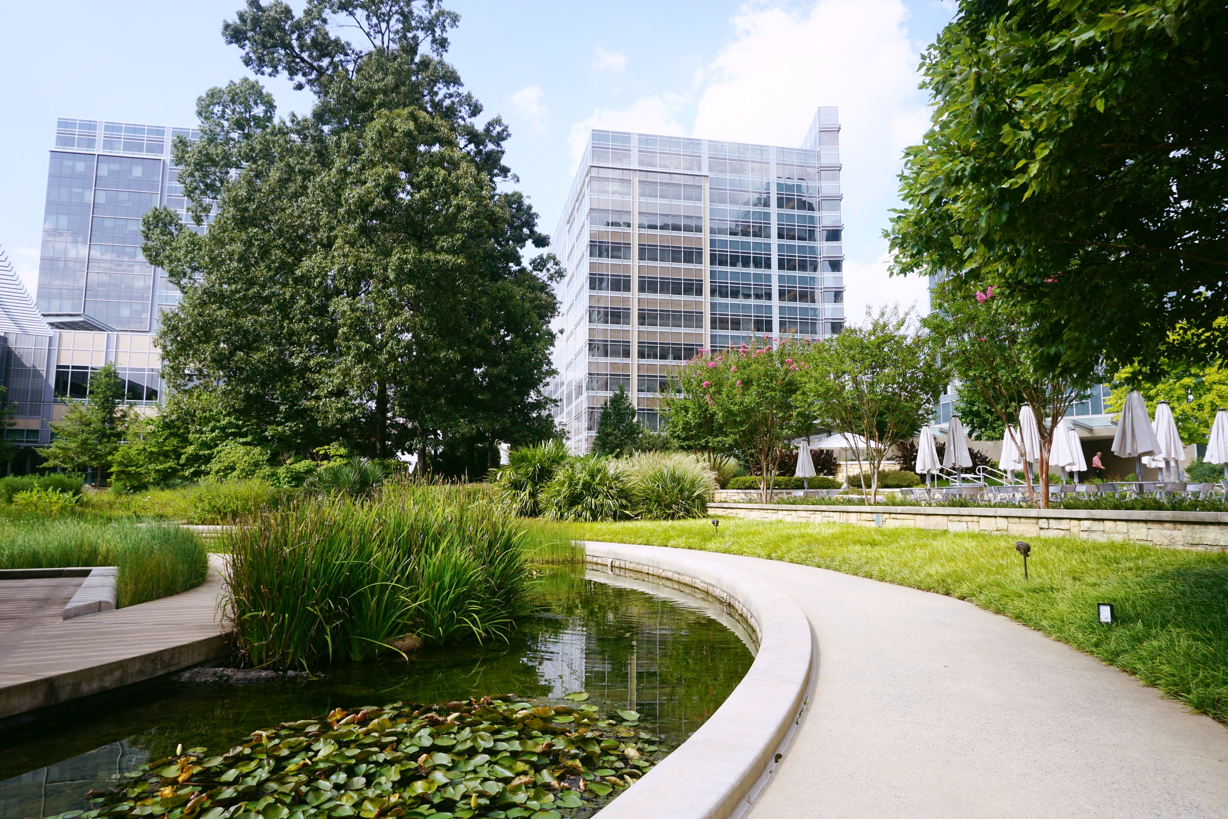 Image of displaying two Cox Communications C-Tech Buildings with foliage and a small water feature in the foreground.