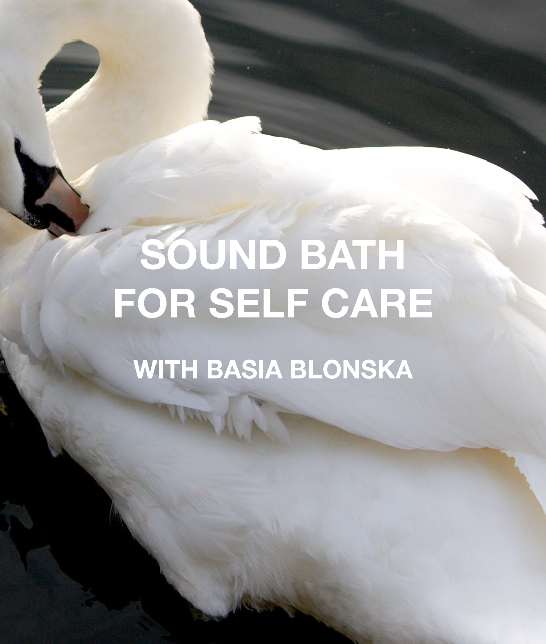Sound Bath for Self Care with Basia Blonska.png