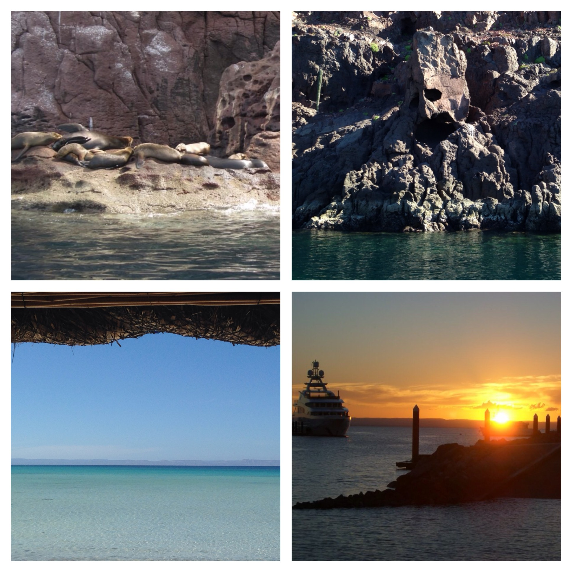 Top Left: We went on a day excursion of whale watching and snorkeling with sea lions. Yes, we dived in the water right next to these sea lions to snorkel as they swam around us! Top Right: This rock formation looks like a mask. Bottom Left: A relaxing day at the beach. Bottom Right: Twilight in La Paz.