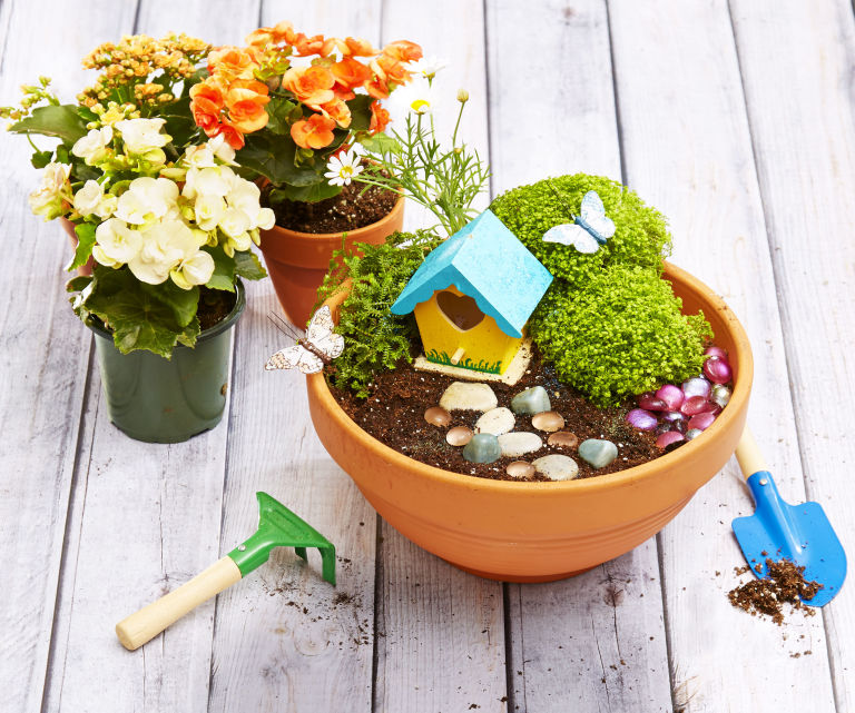fairy garden.jpg