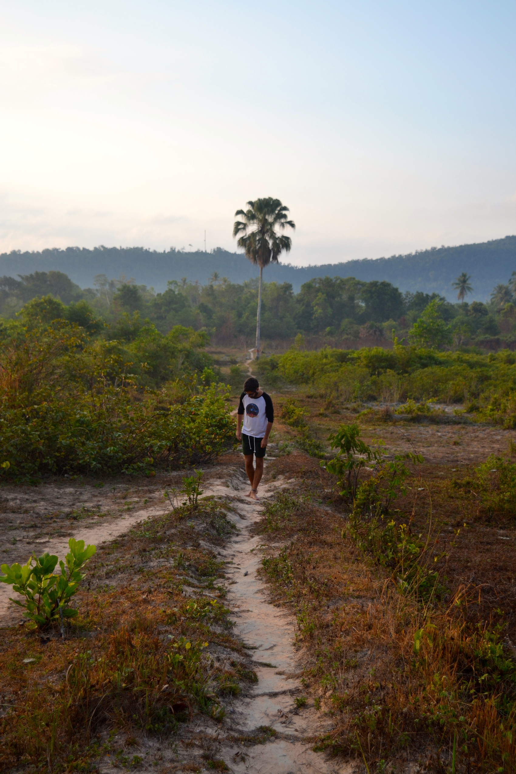 Walking through the jungle to the nearby village