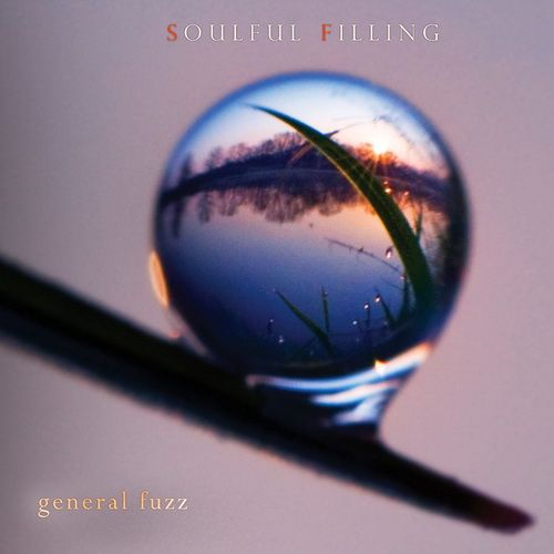 1308585884_general-fuzz-soulful-filling.jpg