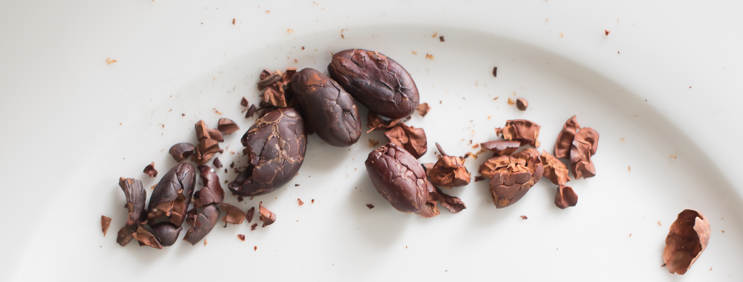 Roasted and hulled cocoa beans, ready to grind into pure delicious chocolate.