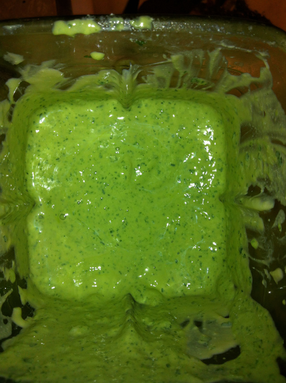 greensauce4.jpg