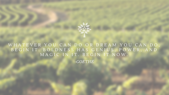WHATEVER YOU CAN DO OR DREAM YOU CAN DO, BEGIN IT. BOLDNESS HAS GENIUS, POWER, AND MAGIC IN IT. BEGIN IT NOW..png