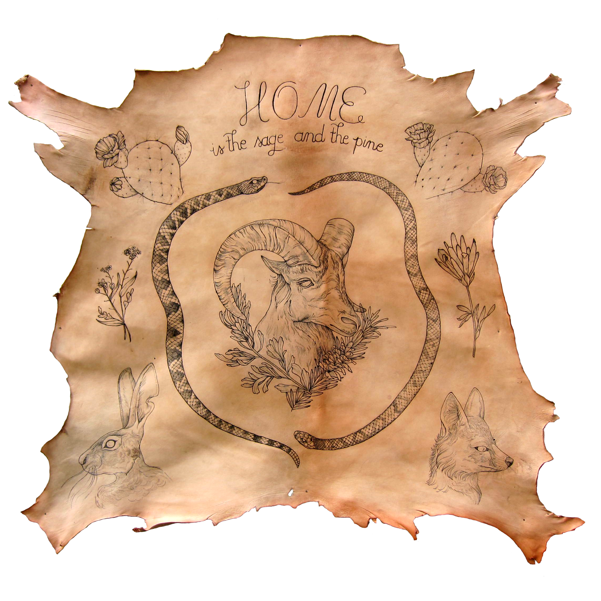 Home is the Sage and the Pine - 2015 Tattooed full goat hide (sold)