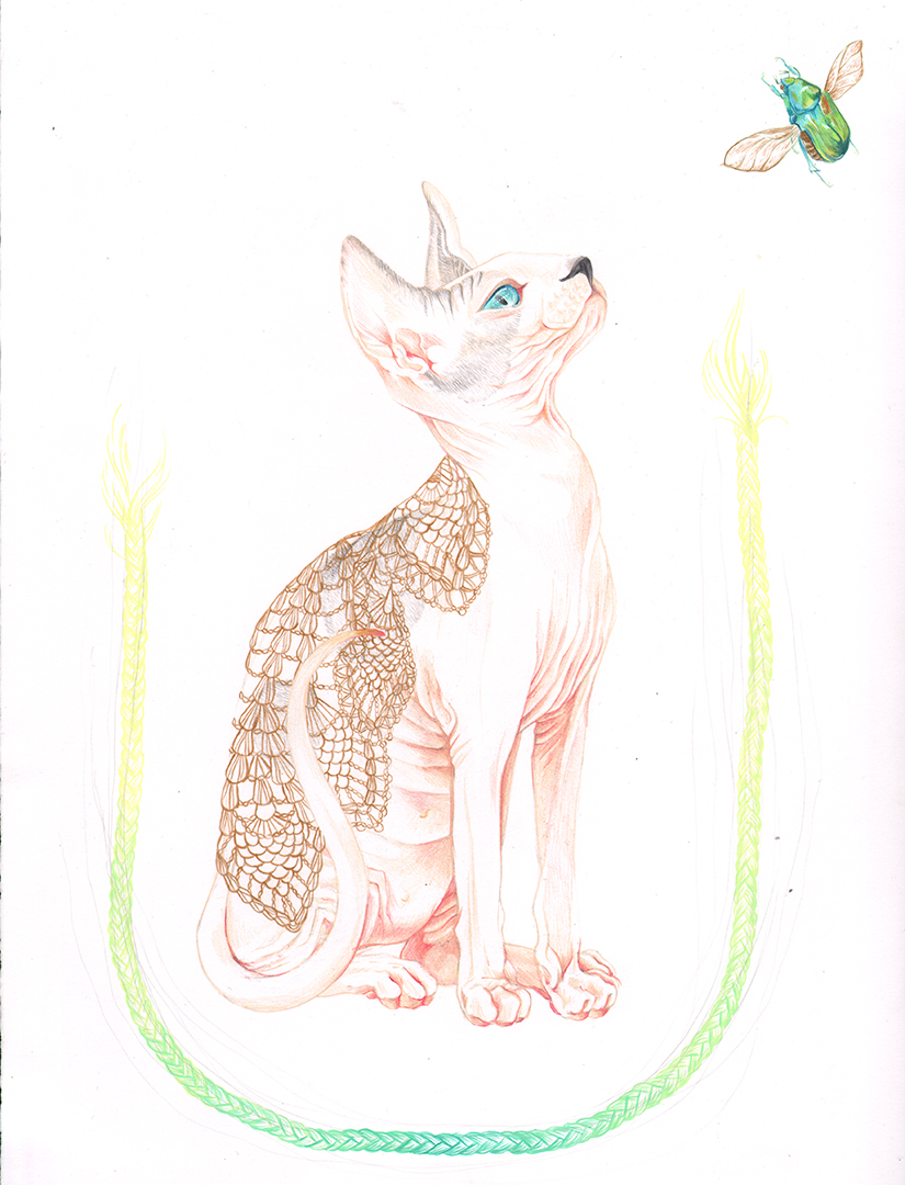 Sphynx - 2016 colored pencil guache and acrylic on watercolor paper - Available - contact ReliquaryTattoo@gmail.com for Purchase inquiry
