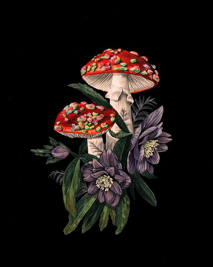 Opal Amanita and Hellebore - 8X10'' - Gouache on paper - Original & prints available - contact ReliquaryTattoo@gmail.com for original purchase inquiry. Prints available in the web shop.