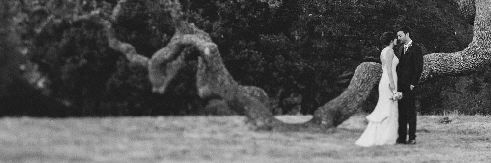 Bride and Groom Under a Big Sur Oak