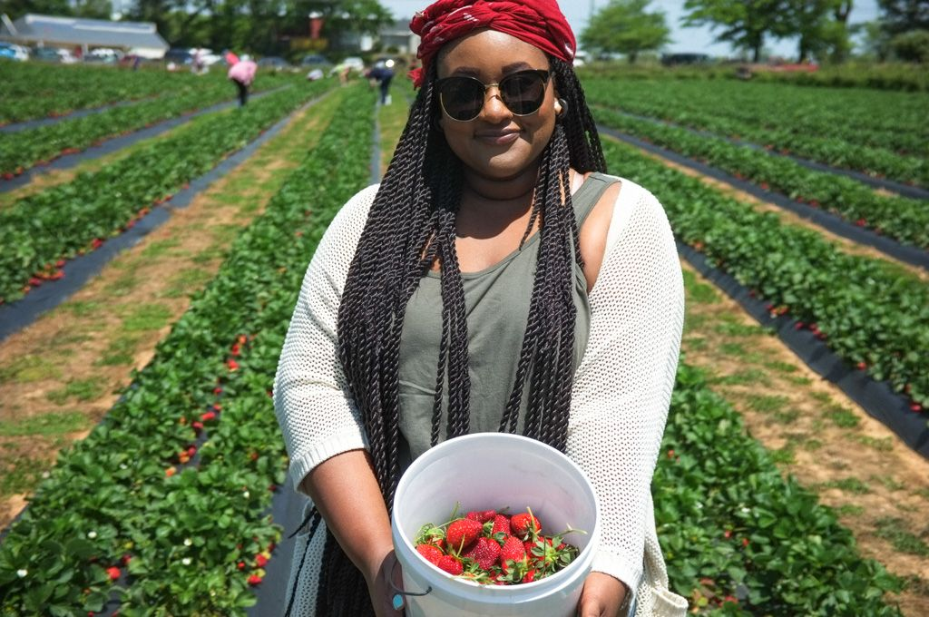 Candra poses with her bucket of strawberries in the field of Adam's Farm on Highway 54 in Fayetteville, Georgia.