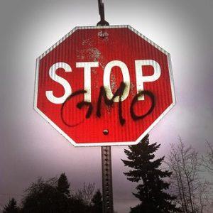 GMOs, Lab meat, Hydrogenation Safe or Dangerous