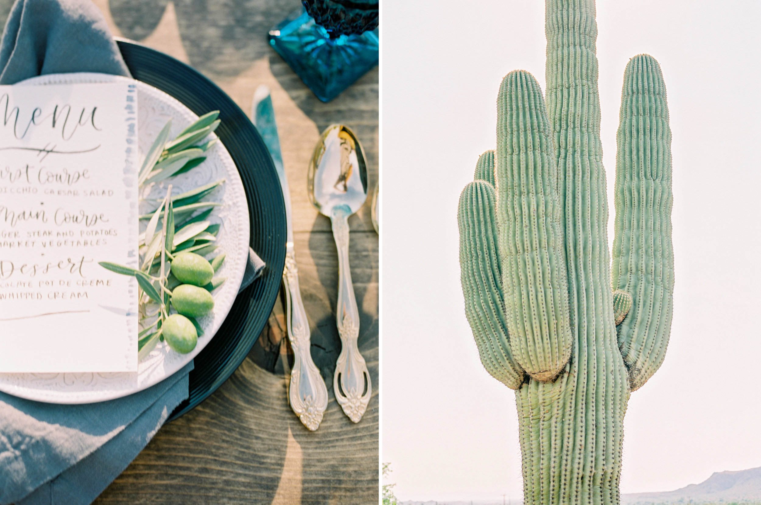 leaf&pine-arizona-weddings-2.jpg